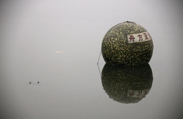 thau de survie chinois